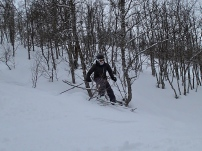 Just skiing through the trees...